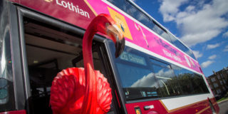 Flamingo on Edinburgh Bus