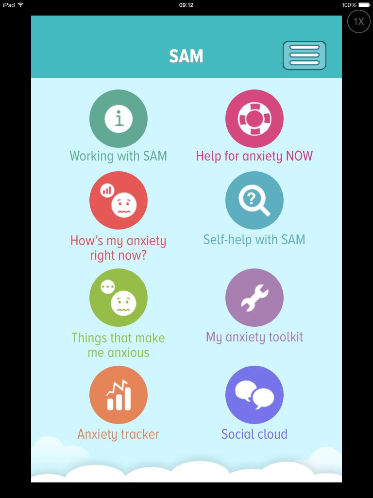 Screenshot showing SAM Categories